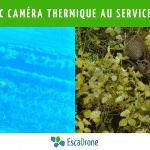 Le drone avec caméra thermique au service de l'environnement