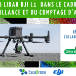 Test du Lidar DJI L1  dans le cadre de la surveillance et du comptage d'arbres